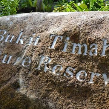 Un peu de hiking à la Bukhit Timah Nature Reserve