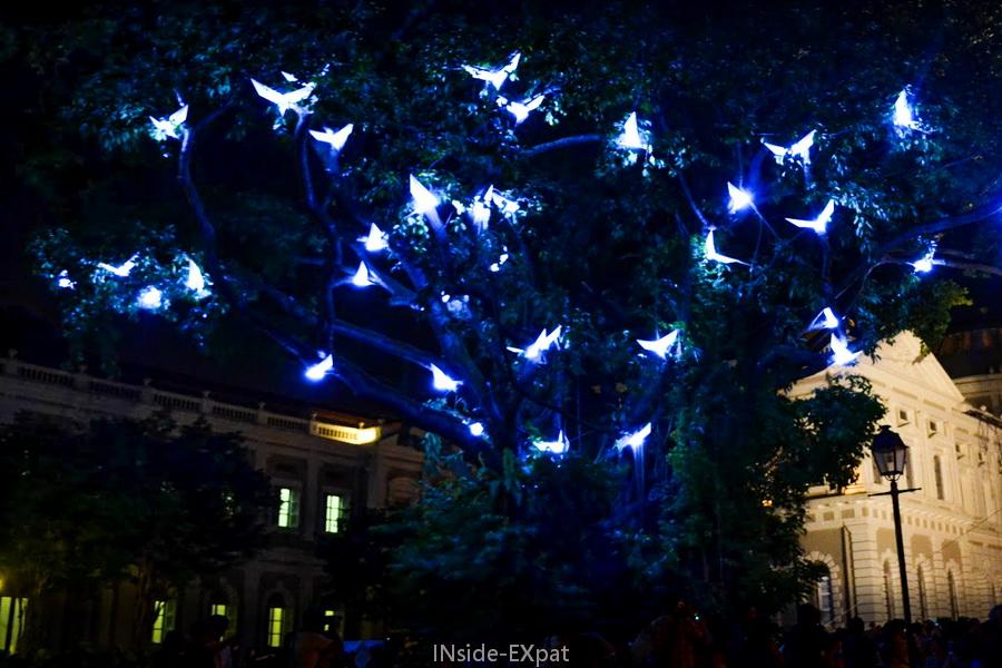 Arbre illuminé pour le Night Festival