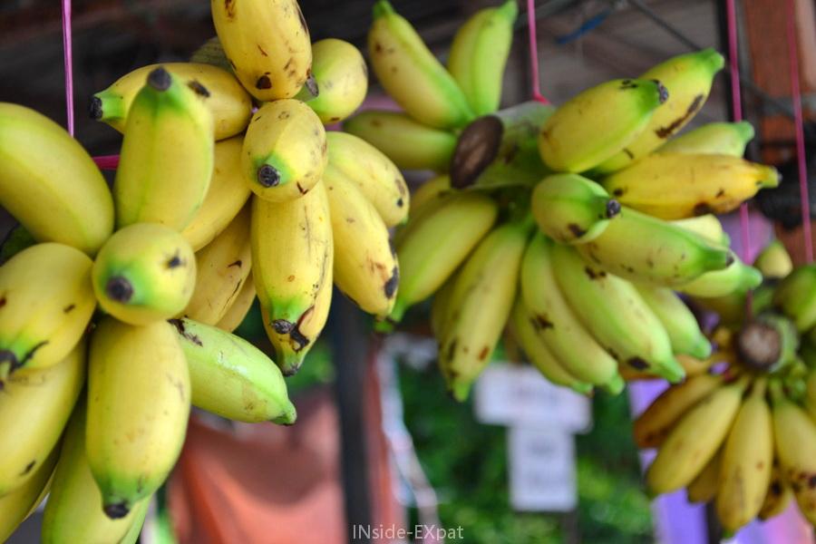Bananes suspendues dans un marché de Pontian, Malaisie