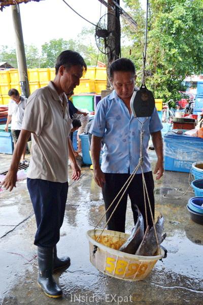 Pesée du poisson sur le grand marché de Pontian, Malaisie