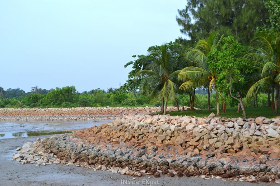Plage de vase de Rambah Beach à Pontian en Malaisie