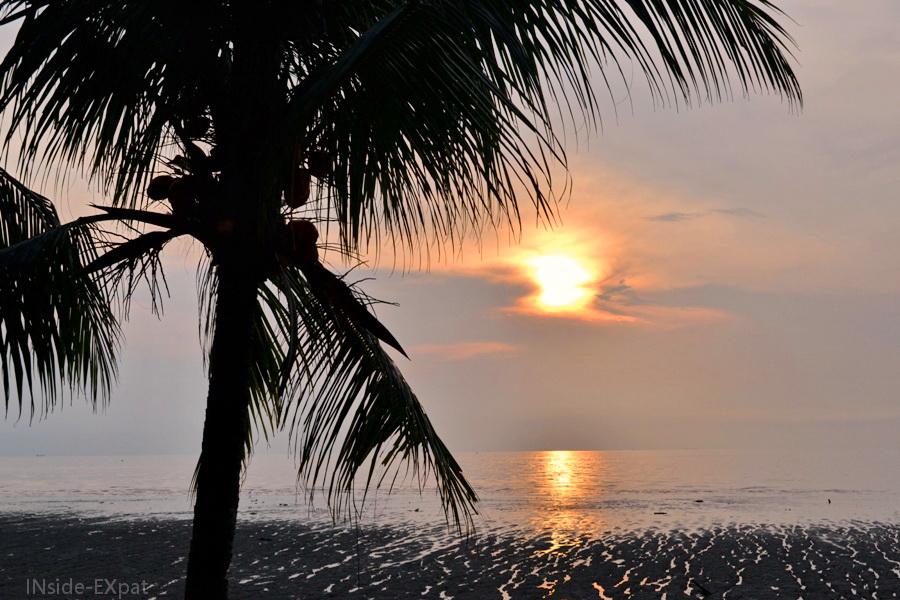 Palmier et coucher de soleil à Rambah Beach (Pontian, Malaisie)
