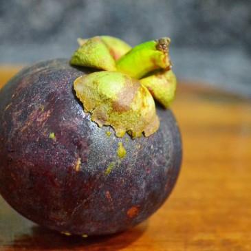 Glace coco-mangoustan (sans sorbetière)