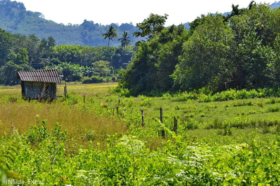 Maison isolée dans la campagne thailandaise à Koh Yao Noi