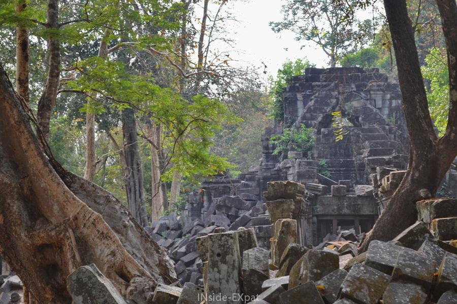 Végétation et ruines khmers à Beng Mealea (Angkor, Cambodge)