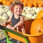 Our first Pumpkin Patch (Clayton, California)