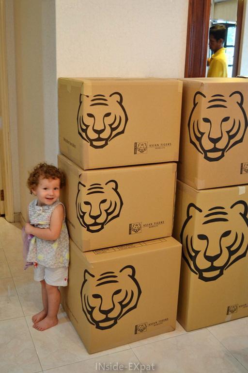 Mimi, toute petite à côté des cartons