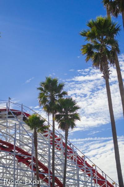 Entre palmiers et montagnes russes
