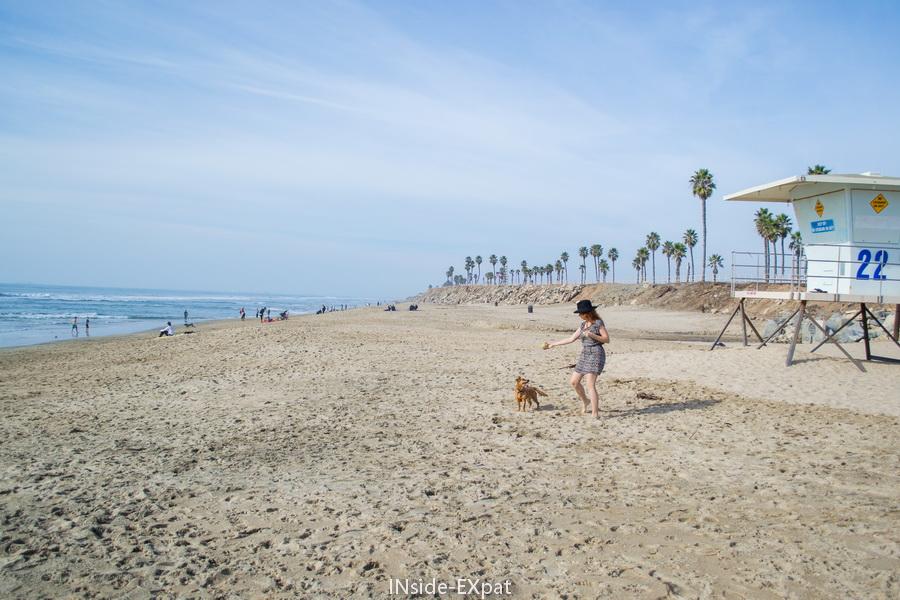 Plage pour chiens de Huntington Beach