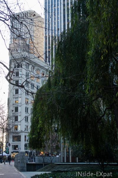 Des arbres et des immeubles