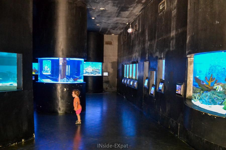 Les peintures abîmées des murs de l'Aquarium de Manille