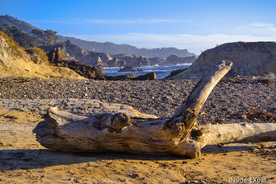 Point Lobos, plage sauvage
