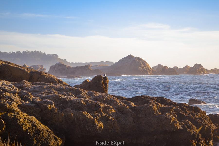 Les rochers à Point Lobos
