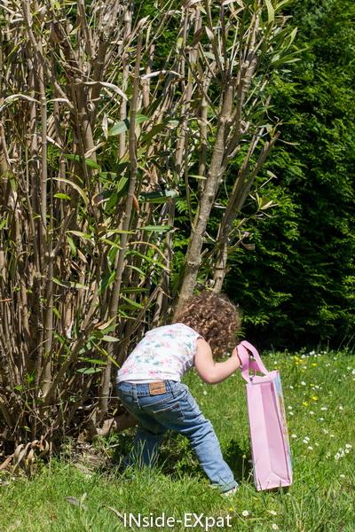 Chercher derrière les arbustes