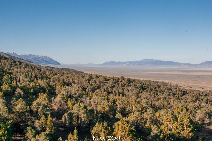Forêt et plaine aride