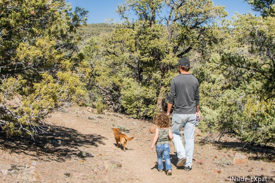 Doggy B., Mimi B. et Daddy B.