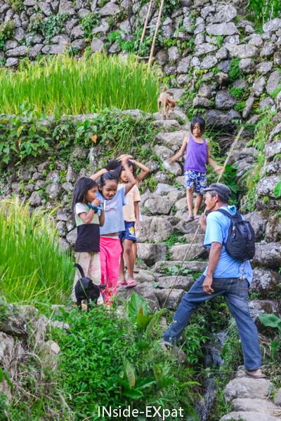 Les enfants philippins dans les rizieres