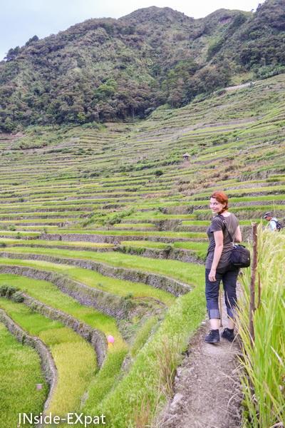 Mummy B. dans les rizières