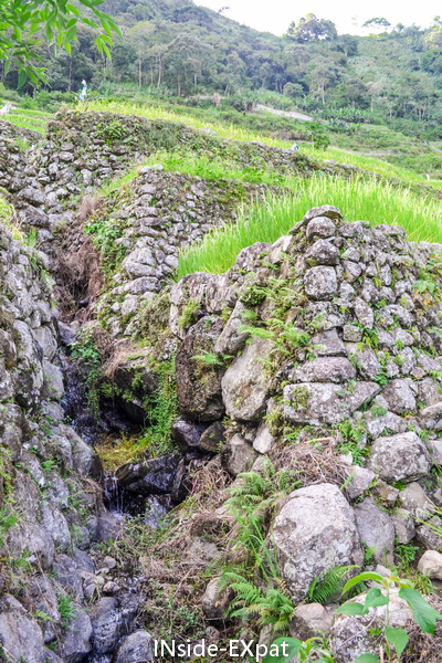 Système d'irrigation des tribus Ifugao