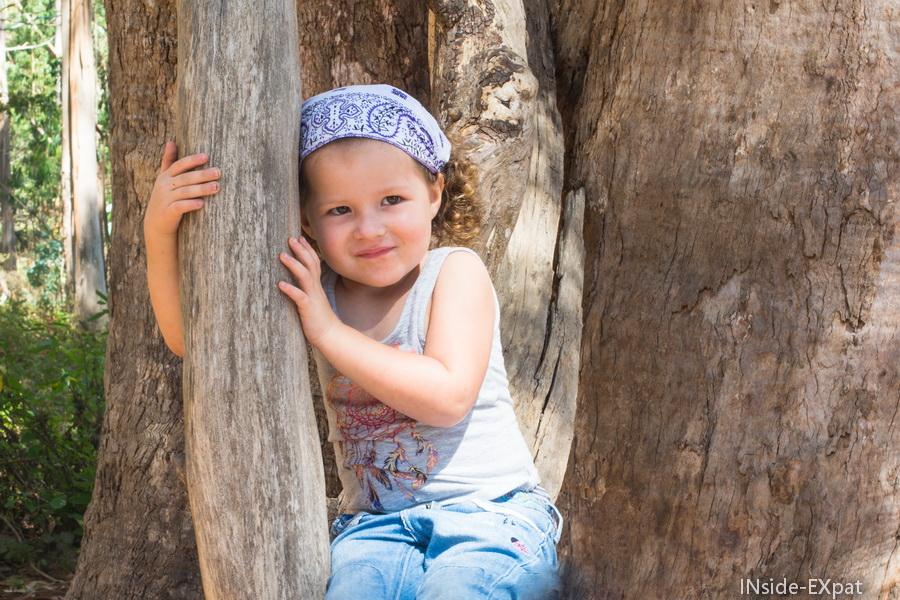 Mimi accrochée à un arbre