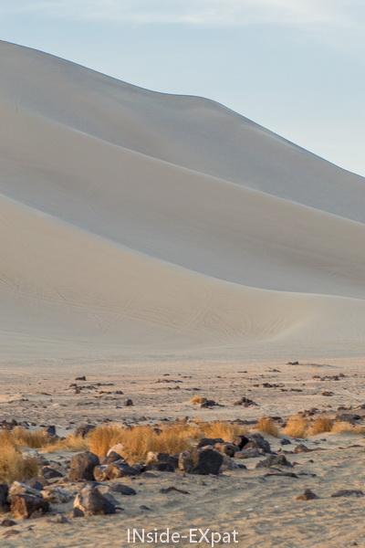 les traces sur la dune
