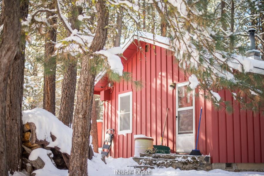 Squirrelville sous la neige