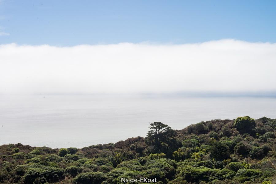 Point Reyes dans le brouillard