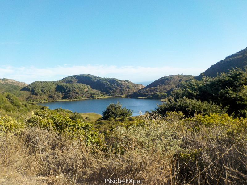 inside-expat-pelican-lake-point-reyes
