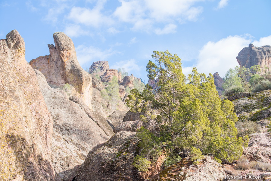 Les rochers de Pinnacles NP