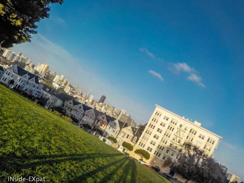 Painted ladies & SF skyline