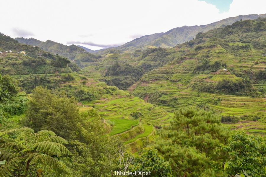 Viewpoint Banaue