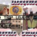 vlog voyage 6 - road trip usa