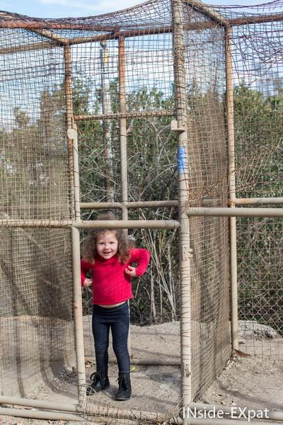 Mimi en cage