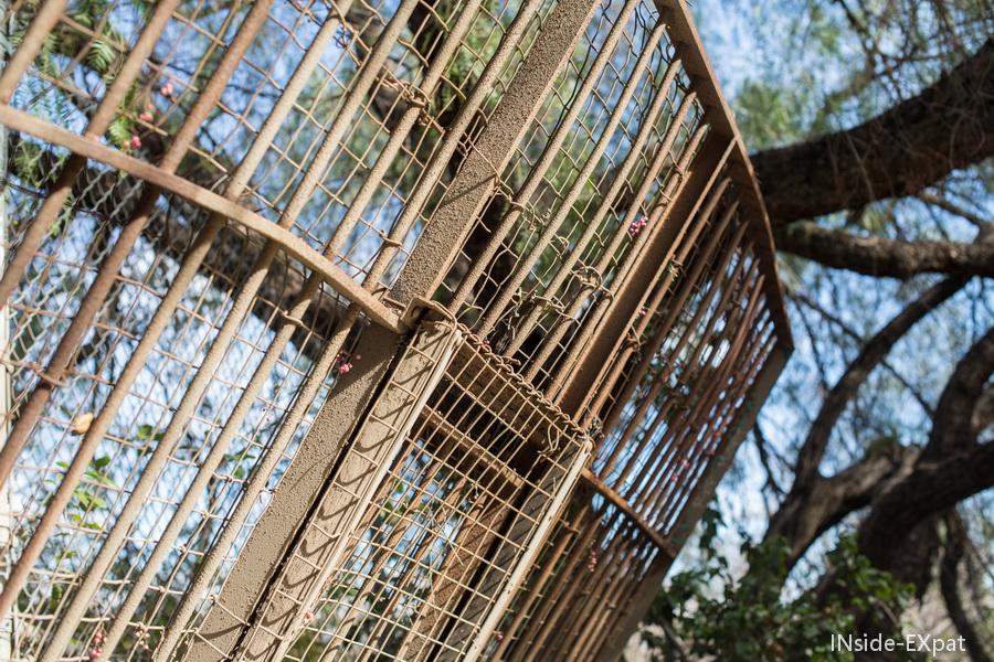 Cage du vieux zoo