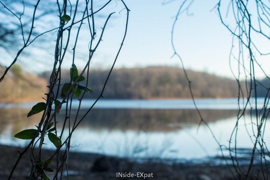 Lake Frank en hiver