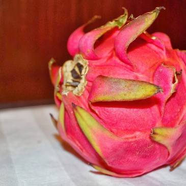 Le pitaya ou fruit du dragon