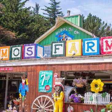 Lemos Farm, a mix of mini-farm and amusement park (Half Moon Bay, CA)